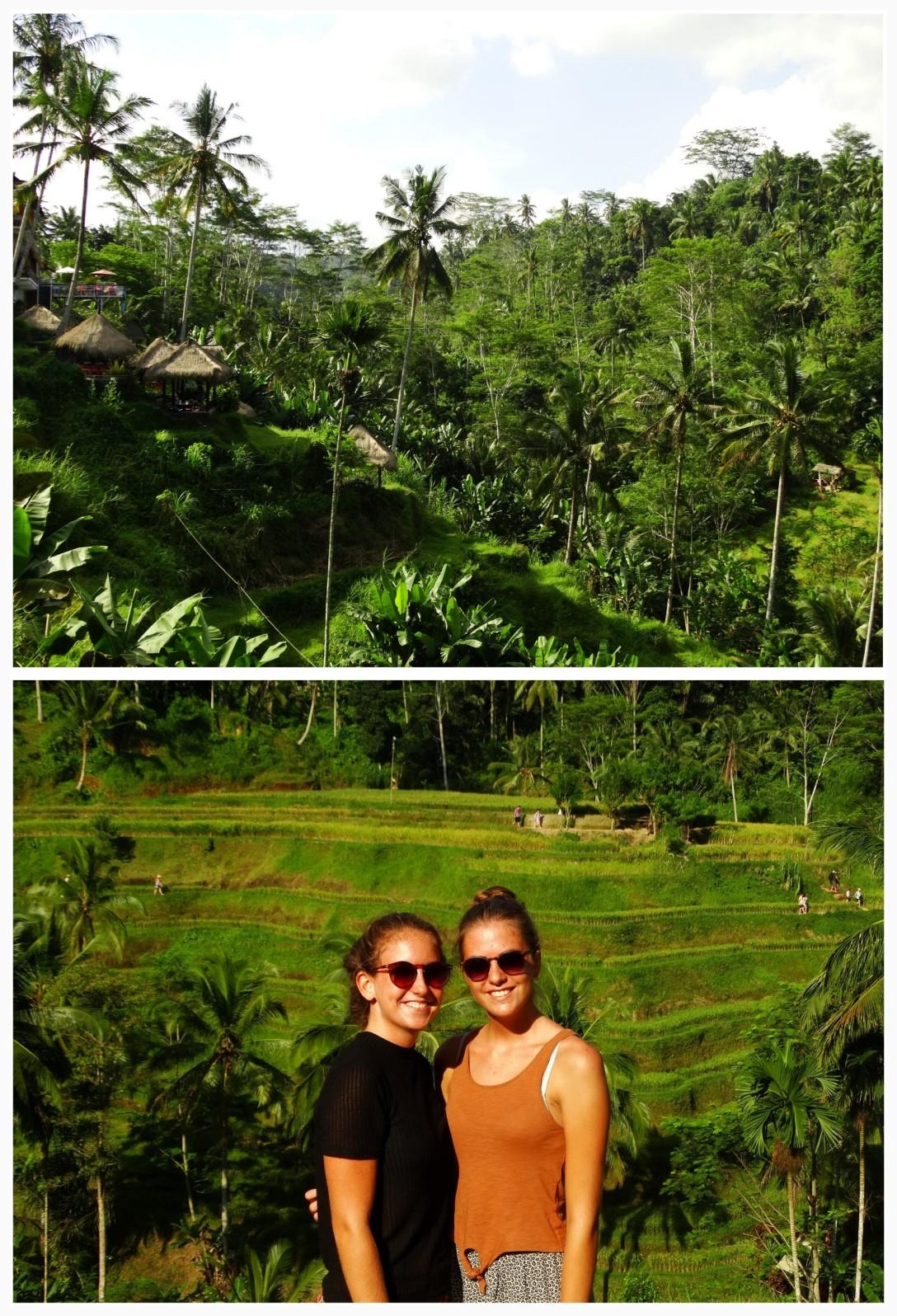 week 9 Bali 5