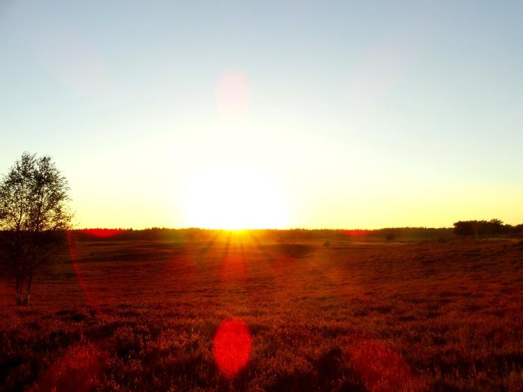 golden hour 13