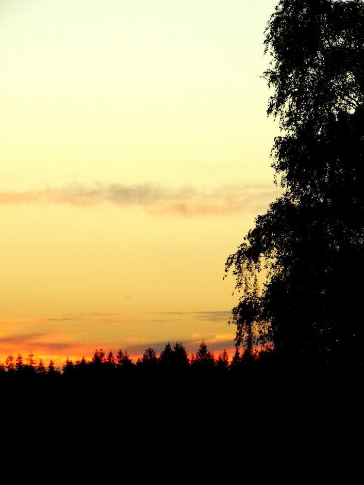 golden hour 23