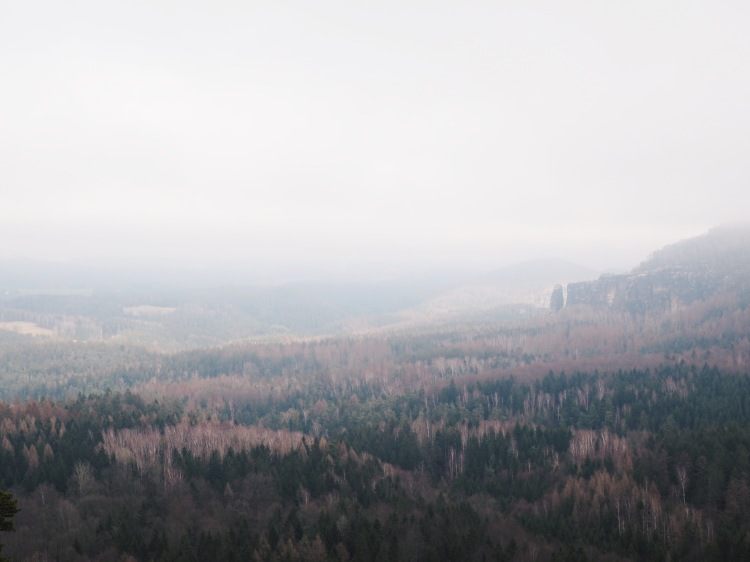 Processed with VSCO with hb2 preset